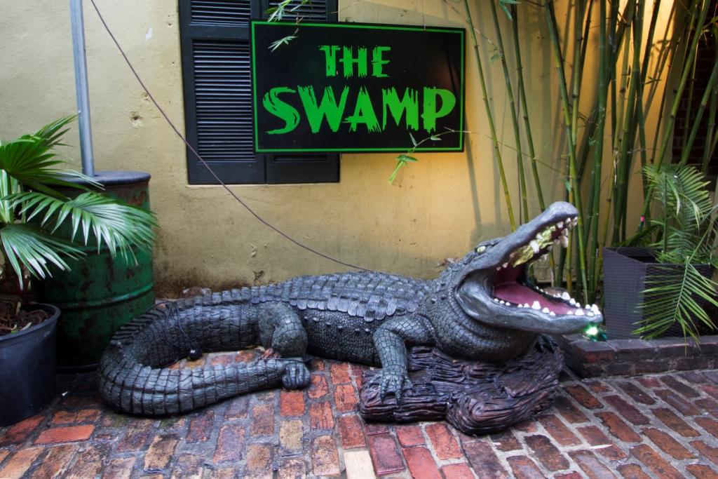 The Swamp on bourbon street aligator